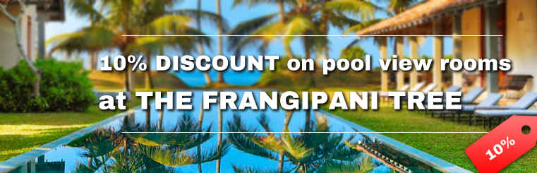 The Frangipani Tree special